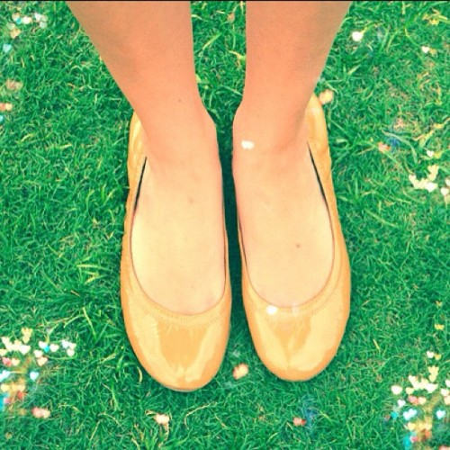 My new @toryburch #flats feel like pillows on my feet! Get yours here: http://rstyle.me/fvdmcrw #fashion #style #shoes #blog #blogger (Taken with Instagram)