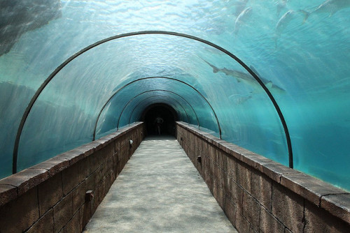 Atlantis Tunnel by old_school_dave on Flickr.