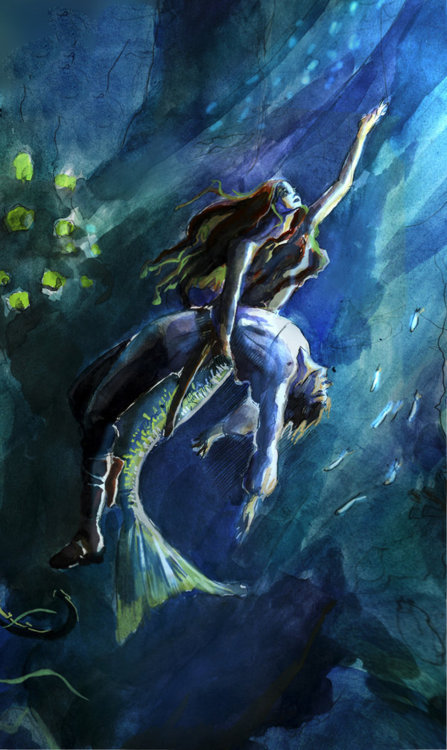 forestoffairytales:  The Little Mermaid