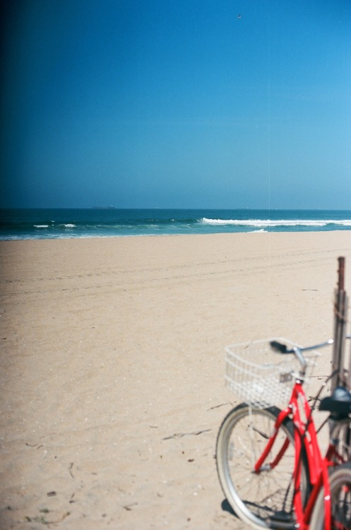 natcatwil:  this is our beach. and my bike.