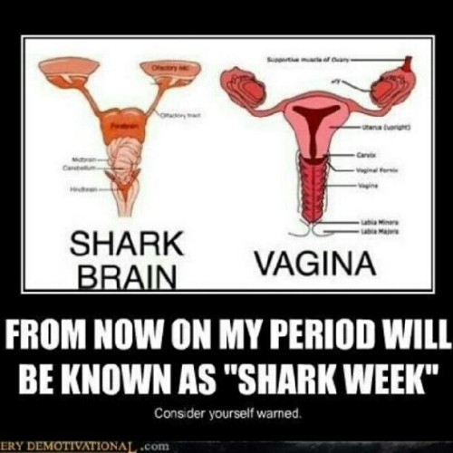 #sharkweek #Sharks #vagina #period #menstrualcycle #accurate (Taken with Instagram)
