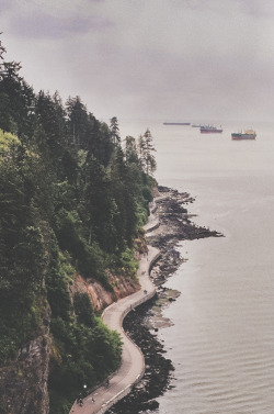 man-and-camera:  Stanley Park