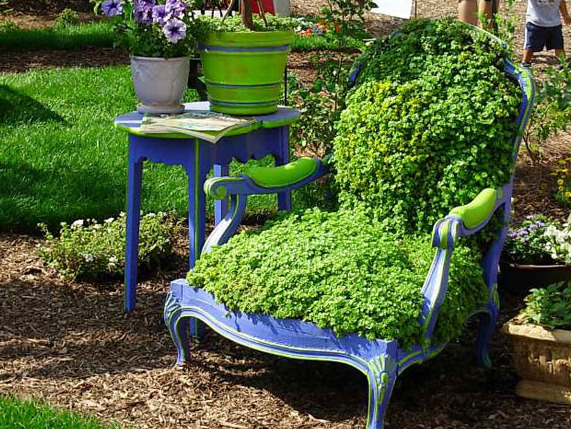 shutterhoney:  Garden chair