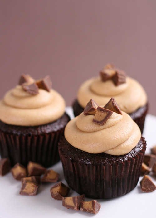 delectabledelight:  Chocolate Peanut Butter Cupcakes (by Glorious Treats)