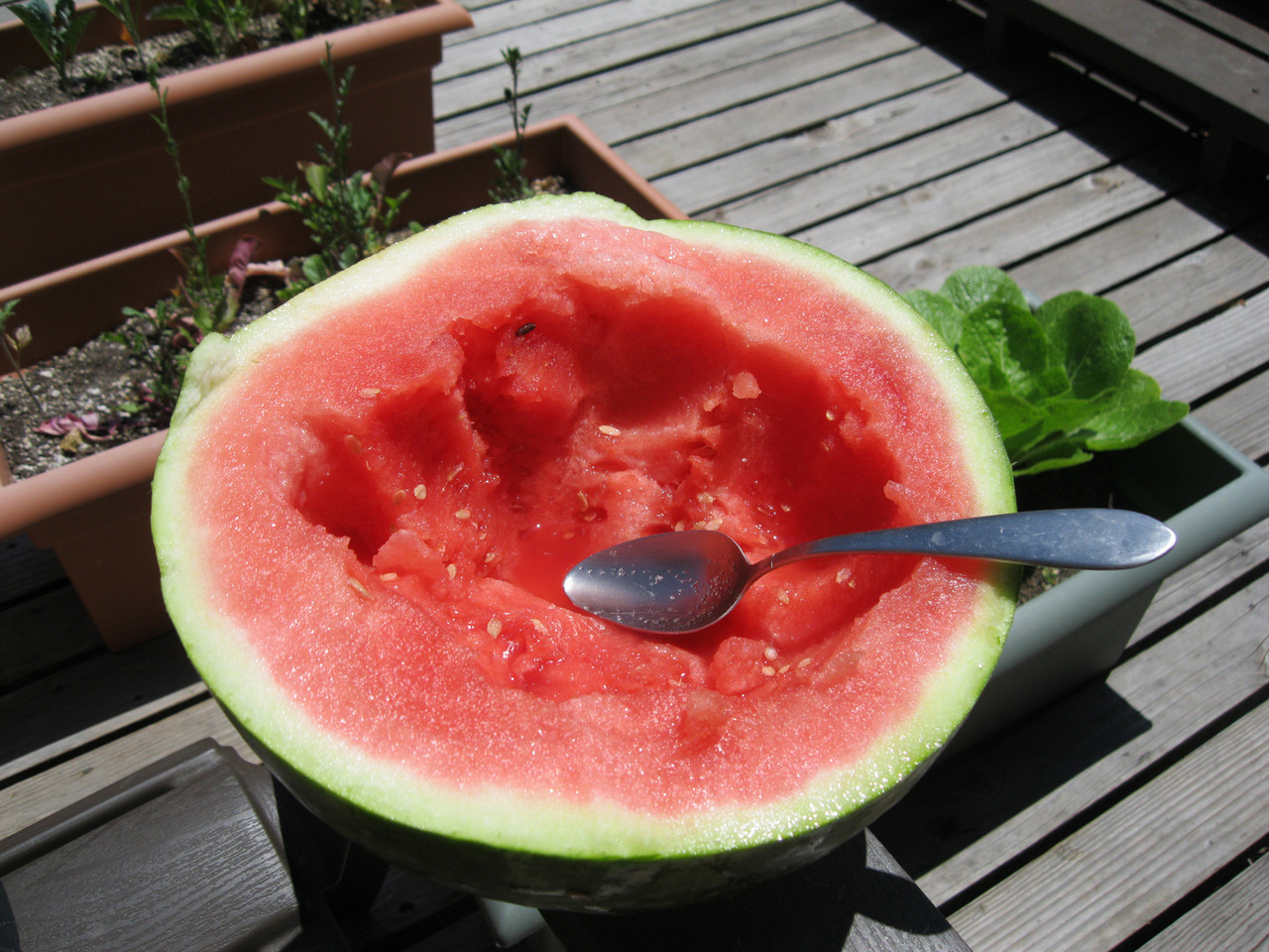 Eating melons in the sun is blissful.