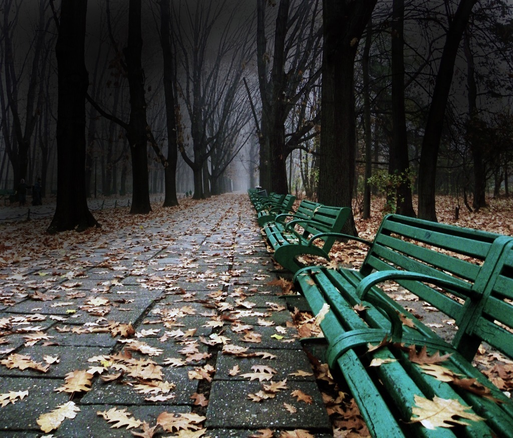 Dark path to nowhere By: Stoica Daniel