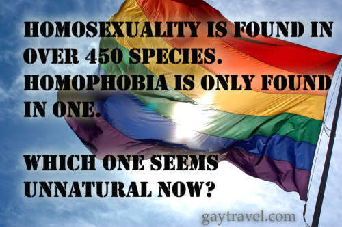 Homophobia is unnatural.
