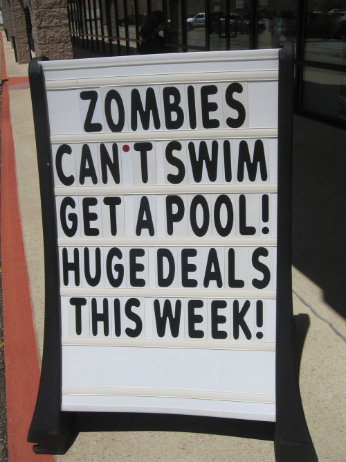 formaldehydeandabsinthe:  -This was outside the pool store today.