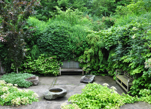 outdoorsanctuaries:  (via Three Dogs in a Garden: Part 2 Gardens with an Uneven Terrain)