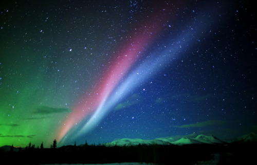 Southern Northern Lights (by David Cartier)
