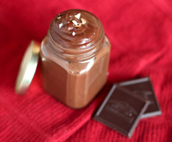 justanerdyfoodie:  DIY: Homemade Nutella - recipe here