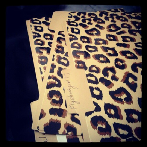 I really like my cheetah filling folders .. #random #style #office #inspiration (Taken with Instagram)