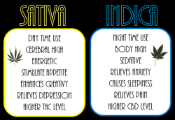 smoke-n-flow:  usually only get sativas but ugh i love me some indica