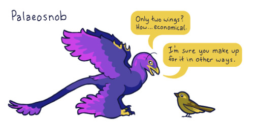 "birdandmoon:  Ok, just a goofy doodle. I came across the term ""palaeo snob,"" which refers to a person who follows the palaeo diet and is condescending about it. I think paleontologists should steal this term. The four-winged Microraptor is one of the coolest dinosaurs ever."