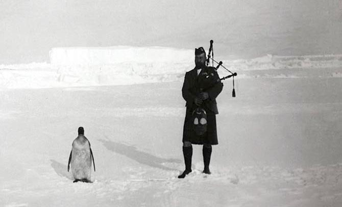 bartleby-company:  A member of the Scottish National Antarctic Expedition plays the bagpipe for an indifferent penguin, 1904