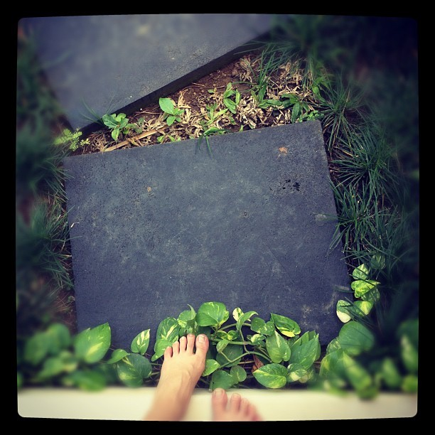 Stepping stones to get around this #villa. #bali #feet #grass (Taken with Instagram)