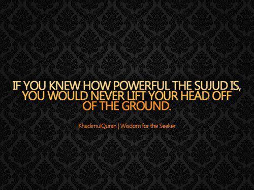 halalpics:  Power of Sujud