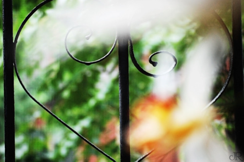 Wrought Iron Love