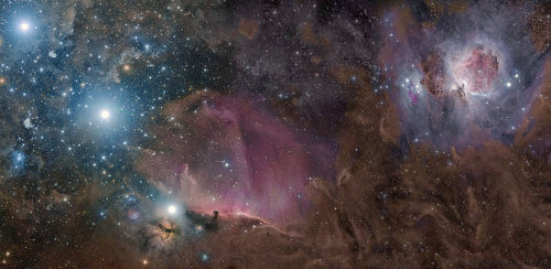 n-a-s-a:  Orion in Gas, Dust, and Stars  Credit & Copyright: Rogelio Bernal Andreo
