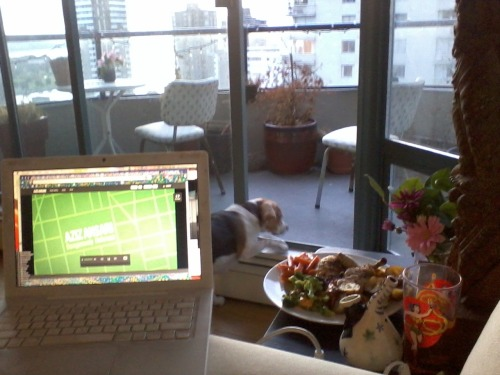 Sunset, fresh flowers, happy beaglefriend, wine in fridge, herb roasted chicken & veg, weed in bowl, Aziz Ansari special purchased - #IAmMyOwnBoyfriend