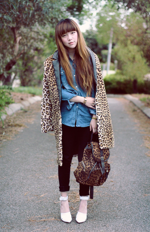 what-do-i-wear:  Faux-fur leopard print coat c/o Romwe, The Editor's Market denim shirt - Similar here, here and here, Tokito high-waisted pants, Leopard-print backpack c/o Toxic Codeine, Alexander Wang-inspired heels c/o Jessica Buurman (image: paledivision)