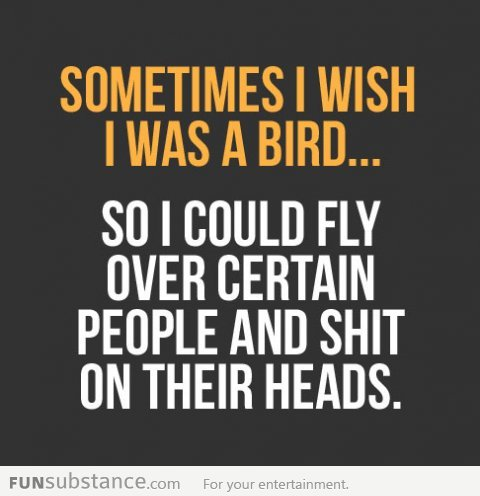funsubstancecom:  I wish I was a bird… More funny pics at FunSubstance.com and the Facebook Page