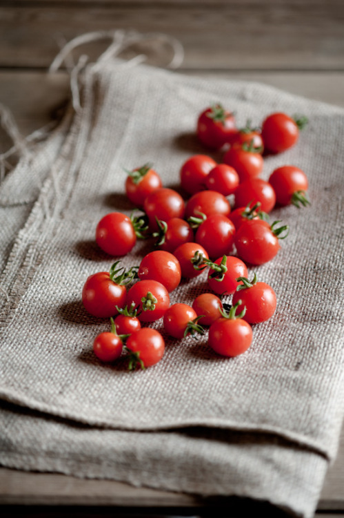 rusticmeetsvintage:  Sarka Babicka Photography    fresh grown tomatoes are heaven. we used to get tens of sheetrock buckets full of tomatoes from edisto every year, and they were literally the most delicious things ever. now my parents just grow little cherry tomoatoes at the house, but tey ain't bad either ;)