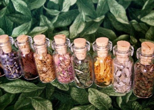 "enchanted-wind:  HEALTH BENEFITS OF HERBS  RosemaryOne of the most powerful herbs yet one of the most versatile. Rosemary infused oil prevents it from going rancid and protects it from oxidation. Because it helps with the regulation of glutathione, rosemary helps the body to detox naturally. It also prevents the formation of carcinogenic amines in meat cooked over high heat. Rosemary is also very rich in antioxidants.ThymeThyme shows a great antioxidant power and helps fight bacterial infections. Like other herbs entering the famous ""bouquet garni"", thyme makes a delicious addition to mustard-based dressings.SageMore than just being rich in antioxidant, sage helps to lower bad cholesterol. This special herb can help to regulate menopause symptoms as well. Sage extract also has been shown to improve memory and attention.MintMint is the champion for digestive problems. It has been shown to help people suffering from irritable bowel syndrome and other digestive issues. It also may have a positive effect on symptoms of polycystic ovarian syndrome.BasilThe pesto champion! Basil reduces high blood pressure and helps with diabetes. As other herbs, basil is also rich in antioxidants.OreganoInterestingly, oregano is one of the few herbs that give a stronger taste when dried, and the same goes for its antioxidant powers. Oregano oil contains broad-spectrum antibacterial agent. This makes oregano an excellent ally to fight infections. Try to take a few drops of oregano oil at the first signs of a cold, and you might avoid it."