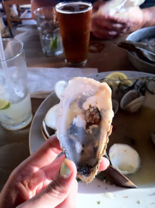 I ate my first oyster ever.  It wasn't as gross as I thought it would be.