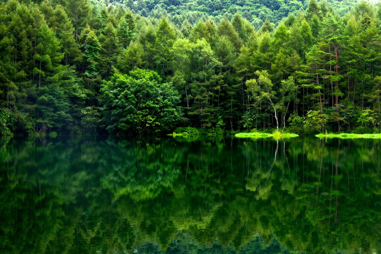 Reflections by tez guitar. Japan / Aichi Prefecture.