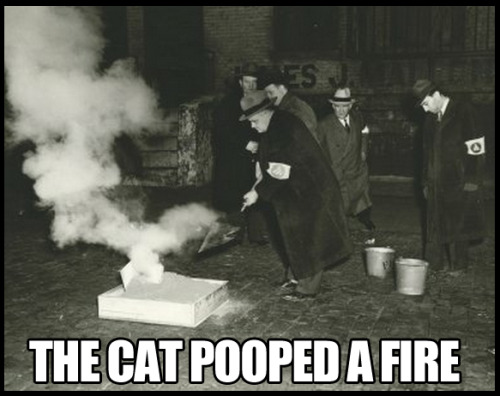 the cat pooped a fire