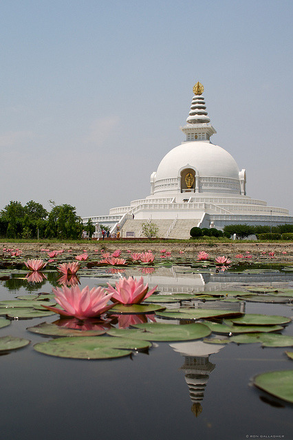 visitheworld:  World Peace Pagoda at the birthplace of Buddha, Lumbini, Nepal (by ronnyg).