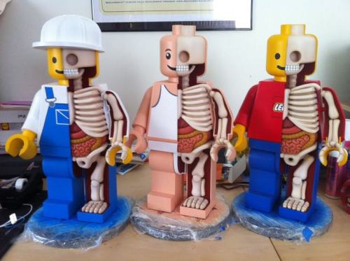 Anatomical Lego Men http://www.moistproduction.com/Menu/index.html by Jason Freeny