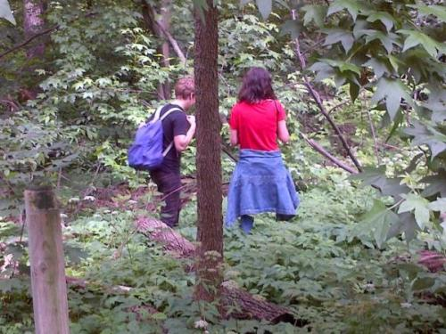 super rare picture of Steve Roggenbuck in the woodz of Prospect Park getting SHOT by the new york times
