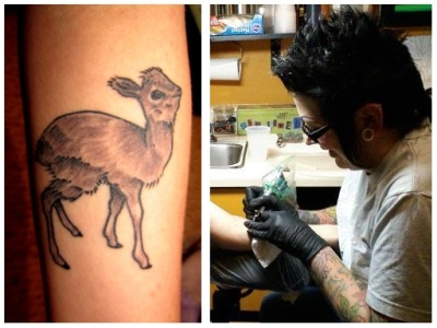 My first tattoo, a baby Dik Dik. (the first of many) Done by Windy Marrant at The Body Electric in Shreveport, Louisiana. Windy does some really good work. She has a very light hand, which made my first tattoo experience a good one.