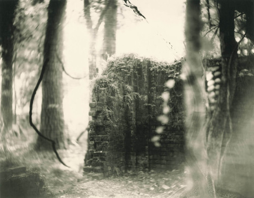 sophiejaine:  sally mann deep south