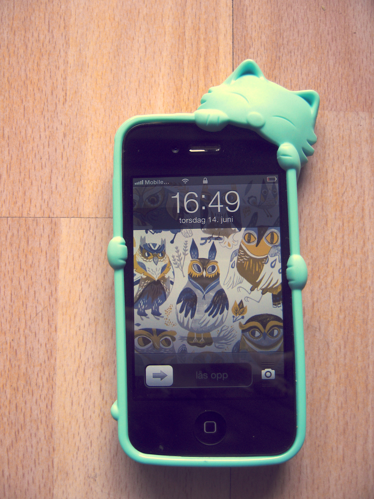Love my new iPhone case <3 and the background !!!