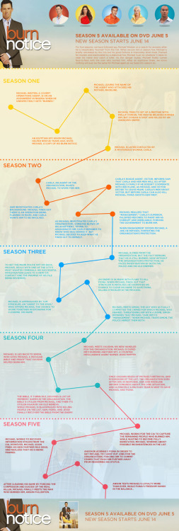 Awesome Burn Notice infographic recapping the first 5 seasons of the series.