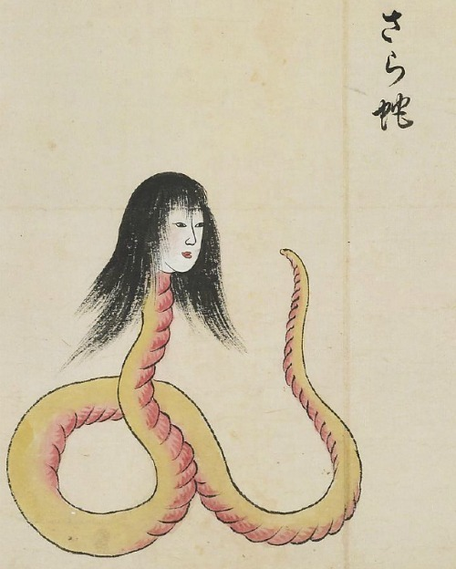 Sara-hebi (さら蛇) is a large, snake-like creature with the head of a woman. From the Japanese Bakemono Zukushi handscroll, 18th-19th century