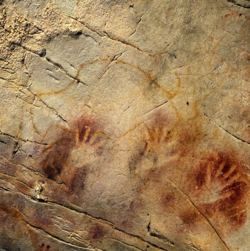 "scinerds:  First Painters May Have Been Neanderthal, Not Human     European cave paintings are older than previously thought, raising the possibility that Neanderthals rather than Homo sapiens were the earliest painters.      That's not yet certain: The paintings may have been made by humans at an unexpectedly early date, which would itself raise intriguing questions, though none so tantalizing as Neanderthal painters.      ""It would not be surprising if the Neanderthals were indeed Europe's first cave artists,"" said João Zilhão, an archaeologist at Spain's University of Barcelona, at a press conference on June 13.      Researchers led by Zilhão and Alistair Pike of the United Kingdom's University of Bristol measured the ages of 50 paintings in 11 Spanish caves. The art, considered evidence of sophisticated symbolic thinking, has traditionally been attributed to modern humans, who reached Europe about 40,000 years ago.      Traditional methods of dating cave paintings, however, are relatively clumsy. Even the previous best technique — carbon dating, or translating amounts of carbon molecule decay into measurements of passing time — couldn't discern differences of a few thousand years.   Full Article"