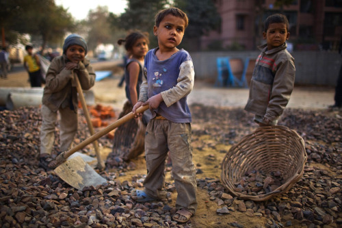 politics-war:  Indian children work near their parents at a construction project in front of the Jawaharlal Nehru Stadium in New Delhi, India, on January 30, 2010. The children accompanied their parents to the work site, where if they are prepared to work, they will receive money for bread and milk and be provided with dinner by the contractor. Photo: Daniel Berehulak