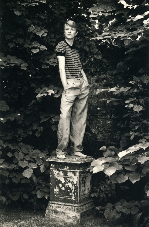 David Bowie, 1978 by Lord Snowdon (more by Snowdon)