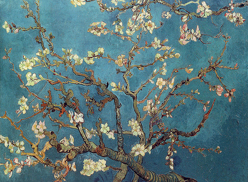 Branch of a Almond Tree in Blossom Vincent van Gogh