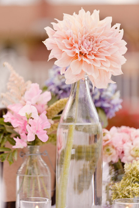 Try using mis-matched bottles from a thrift store with a single, big bloom flower in a cluster as a vintage, rustic looking center piece for any table.  www.rhinestonesandlace.tumblr.com, following back all new followers right now ! xo