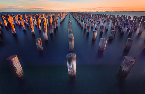 nigglewiggle:  Port Melbourne (by Alex Wise)