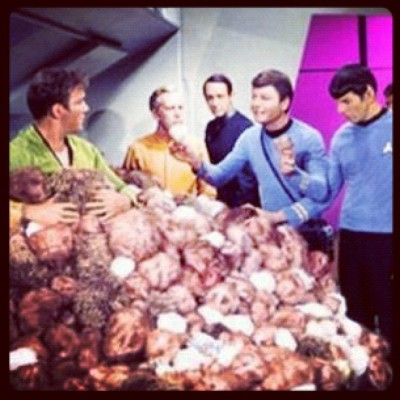 On the next Episode of Hoarders… #hoarders #startrek (Taken with Instagram)