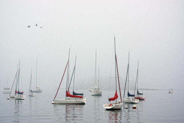 Fog and Sailboats by JMS2 on Flickr.