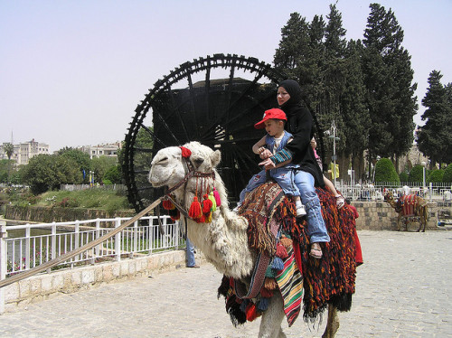 Camel ride in Hama Photo I took in Hama, Syria in 2007. Hopefully the Syrians can get rid of that murderous fucker Assad and become peaceful once again. P5060001.JPG on Flickr.