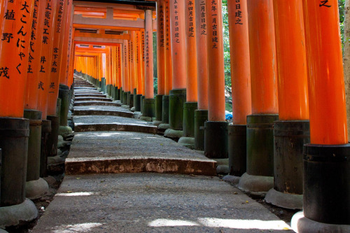 Fushimi Inari (by Héctor de Pereda) Rows of torii at the Fushimi Inari-taisha, the main shrine dedicated to Inari.