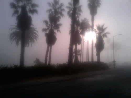 Foggy LA morning @ the beach. It will be completely sunny in 2 hours. June gloom. Playa Del Rey, Ca
